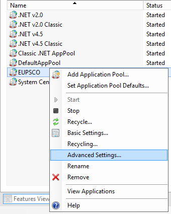 Application Pool - Advanced Settings